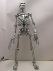 J-Rabs actual skeleton