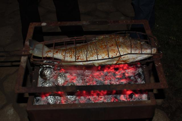 What a fish braai kinda looks like... if you're homeless